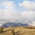 Colorado Wealth Management Fund